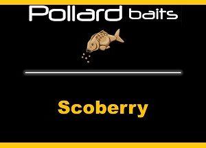 Scoberry