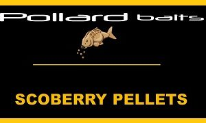 Scoberry Pellets